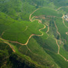 aerial-view-of-sri-lankan-tea-country_15001305708_o.jpg